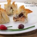 Salmon Dijon Purses Cranberry BBQ Sauce