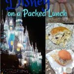 Disney on a Packed Lunch #food #travel #disney #kids #florida #lunchideas
