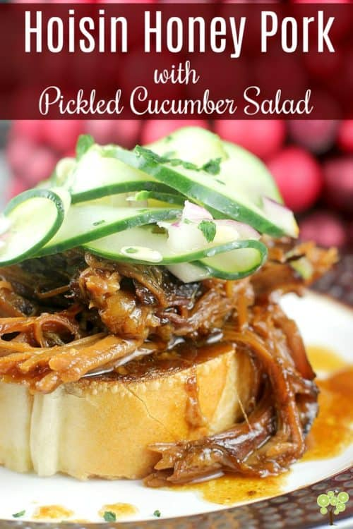 Hoisin Honey Pulled Pork with Pickled Cucumber Salad #DonVictorHoney #HoneyForHolidays #ad