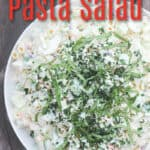 image for pinterest with text overlay recipe title Coleslaw Pasta Salad