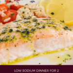 image for pinterest with text overlay recipe title Toaster Oven Salmon