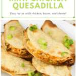 image for pinterest with text overlay recipe title Mini Air Fryer Chicken Quesadilla